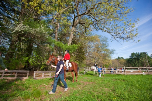 Riding horses at Windrush Farm in North Andover, Massachusetts.